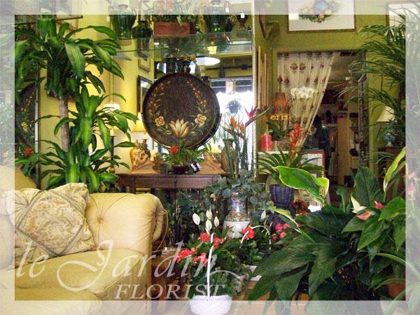 About le jardin florist palm beach gardens north palm for Jardin west palm